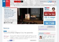 Sitio web de Centro de la Mujer - Sucursal Puente Alto